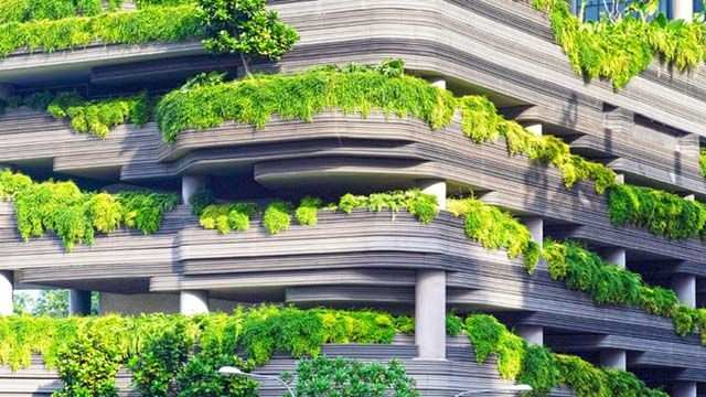 Green bonds for a green future